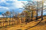 贝加尔湖的秋
