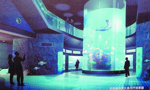 青岛海底世界建设进入关键阶段 计划春节开放(图)