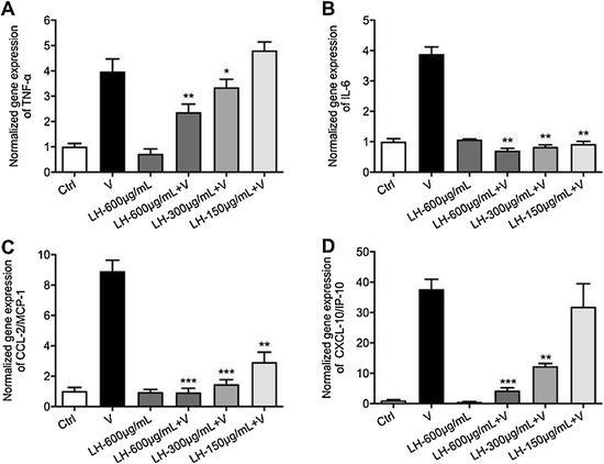 钟南山团队研究:连花清瘟体外试验中显示抗新
