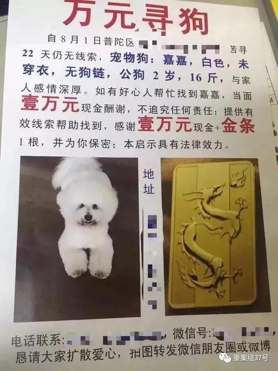 ▲印有金条照片的寻狗启事。受访者供图