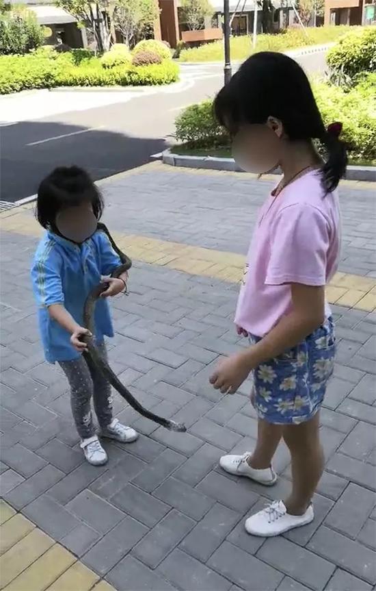 爸爸让读一年级女儿小区内遛蛇练胆 邻居不淡定了