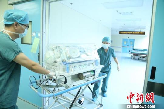 经过医护人员的努力,婴儿最终奇迹般地平安降生 金南星 摄