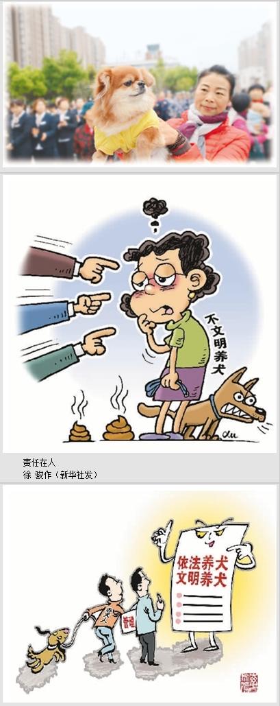 人民日报海外版:怎样养狗才文明?