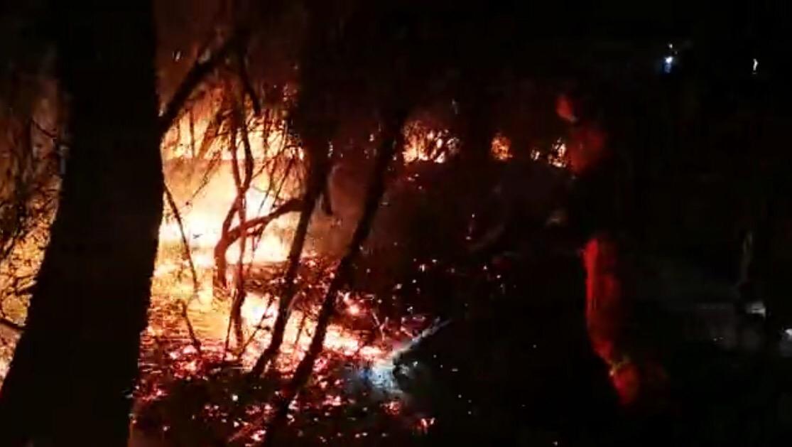 云南安定森林大火过火面积550亩 两千军民参加扑救