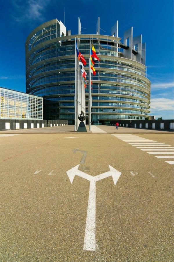 环球论坛丨欧洲议会选举:欧盟寻找未来航向