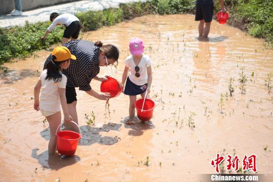 重庆推出83条夏季乡村旅游线路
