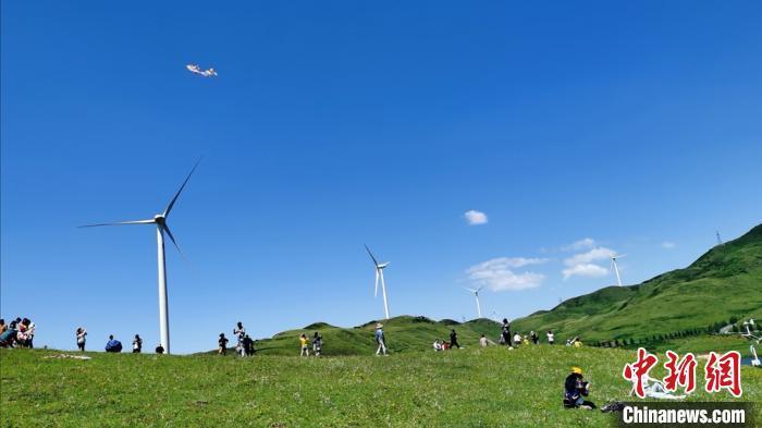 在漫画般的大草原过19℃的夏天