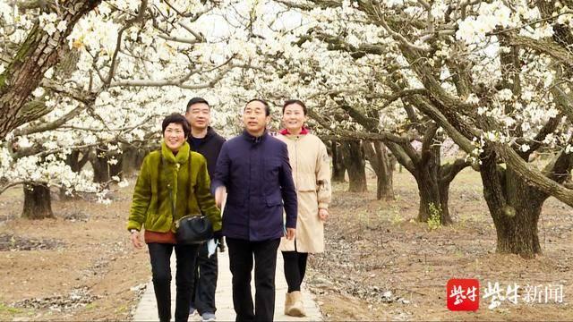 【视频】灌云伊甸园:一夜春风来,万树梨花开插图4