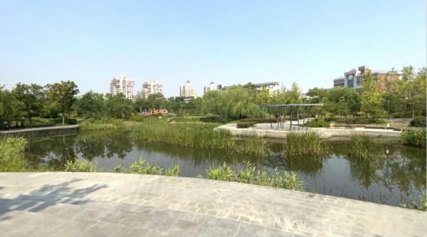 绿化率达80%!普陀区新增一座3.5万平方米的城市