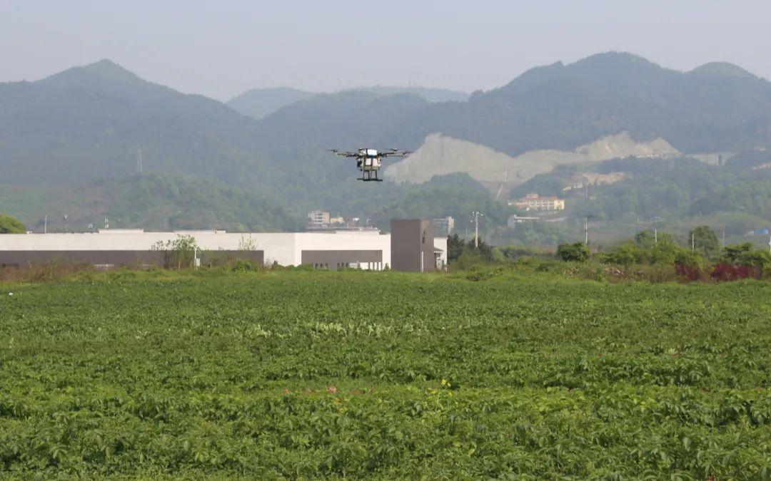 重庆智慧农业发展,大咖们这样说
