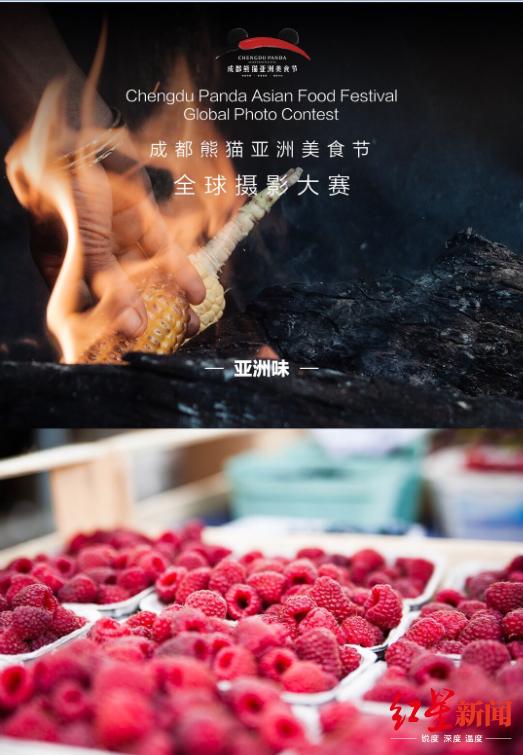 用近万张美照定格人间风味 成都熊猫亚洲美食节_西餐厅十大品牌加盟