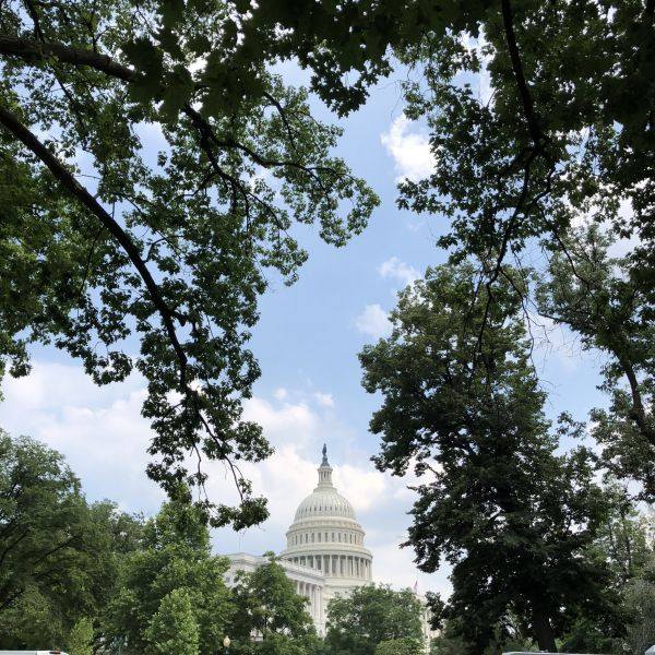 位于美国首都华盛顿的国会山。(新华社)