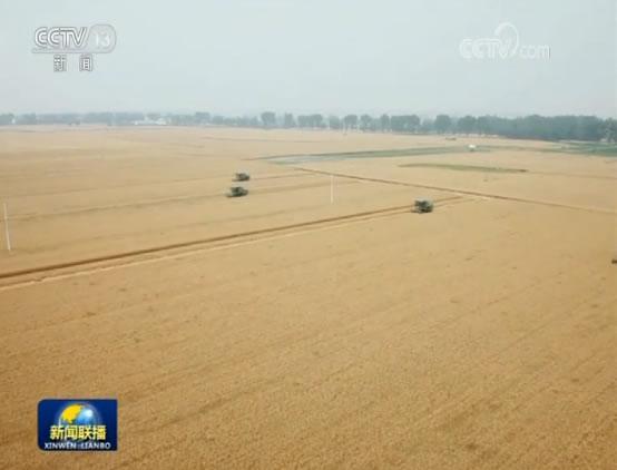 我国夏收近三成 农业供给侧结构性改革稳步推进