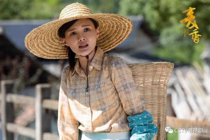 《麦香》热播 一部农村题材的主旋律电视剧何以霸屏?