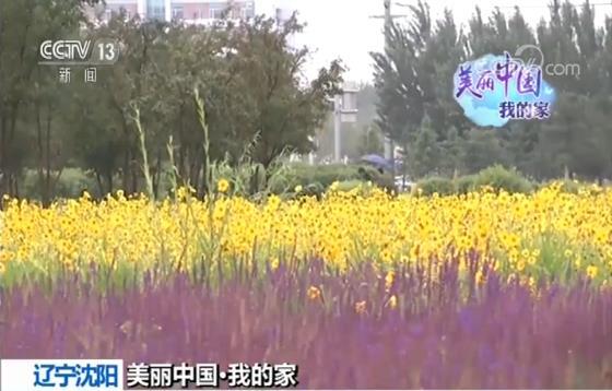 http://www.as0898.com/anshanjingji/6887.html