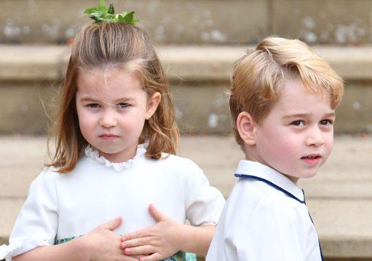 夏洛特公主和乔治王子(地铁报)