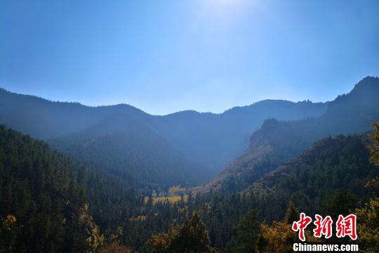 http://www.zgmaimai.cn/huagongkuangchan/127180.html