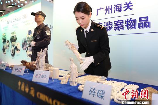 """""""不把象牙带回家""""公益宣传活动在广州举行"""