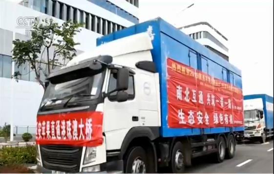 http://www.zgmaimai.cn/jiaotongyunshu/241222.html