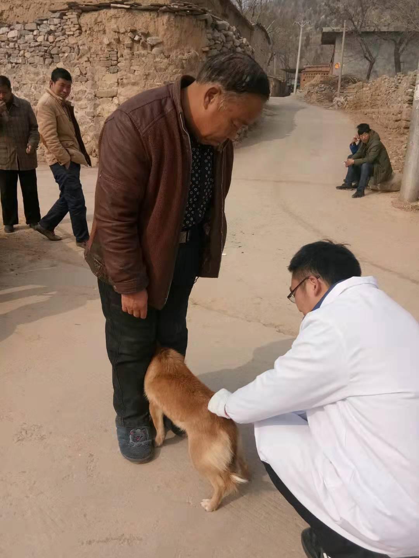 """河南卫辉""""狗舔后狂犬病发""""患儿曾被犬咬伤,"""