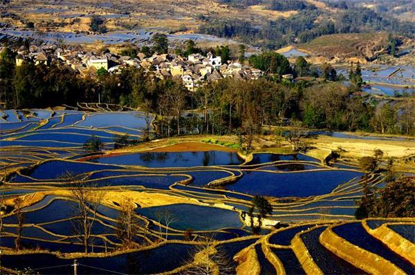 南京土壤所等在淡水养殖系统温室气体排放研究中取得进展