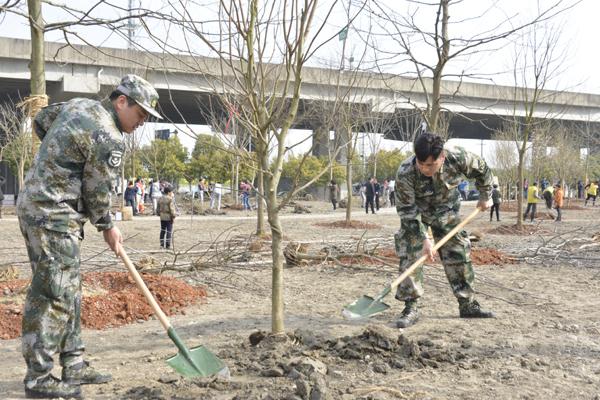 虹梅南路高架旁栽下千株苗木 闵行今年将建180公顷绿地