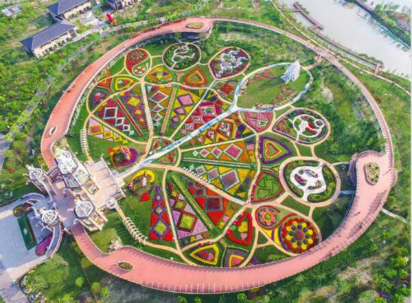 在花海中寻找神奇动物 浦江郊野公园艺术花展即将开幕