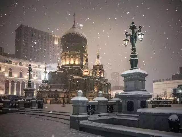 暴雪!暴雪!暴雪!刚刚,黄色预警发布!哈尔滨人朋友圈已炸锅…