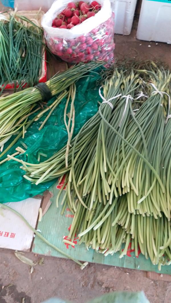 带着泥土芬芳的青蚕豆新蒜苗上市啦 ,天价香椿头跌到40元/斤