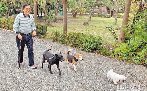 前台湾地区领导人陈水扁保外就医,在公园遛狗。(图片来自台媒)