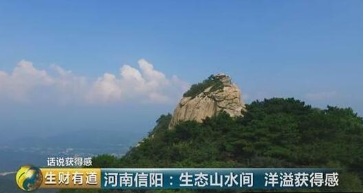 """河南信阳:""""一部手机玩转景区"""" 智慧旅游助力全市旅游年收入313"""