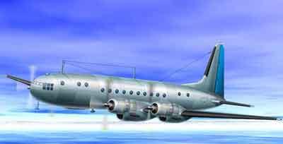 图文:俄罗斯伊尔-18飞机失事