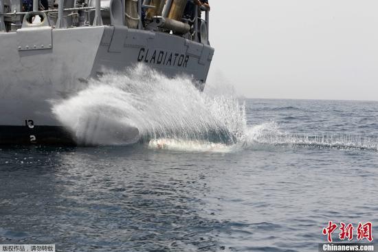 """美国宣布建立新型远程操控部队 以加强海湾""""威慑"""""""