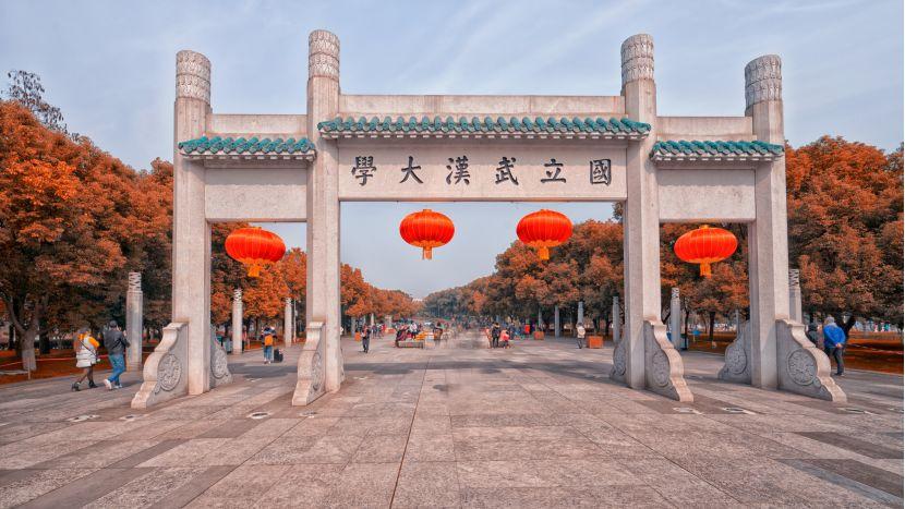 武汉大学校门 (图片起源:摄图网)