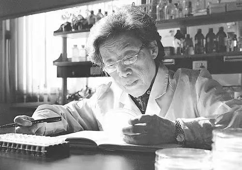 土壤微生物学家陈文新院士逝世