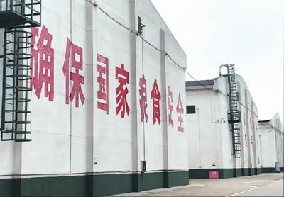 """中国粮库长啥样?粮食怎样储存?探访""""大国粮仓"""""""