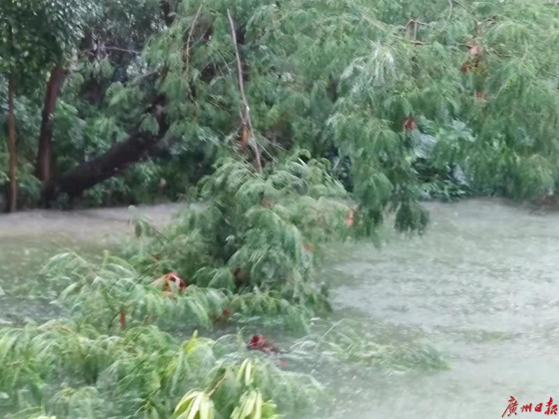珠海暴雨预警升级为红色 公交全线停运、学校停课