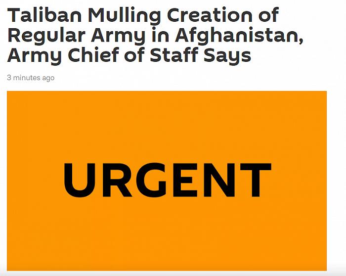 阿富汗陆军参谋长:塔利班考虑建立正规军