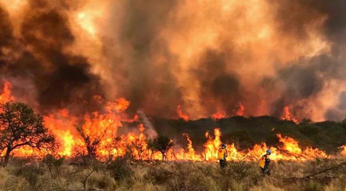 阿根廷山火肆虐:过火面积超3万公顷 已致3人死亡
