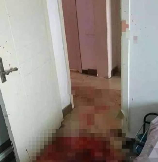 逃犯房内行凶满地血 自如回应合