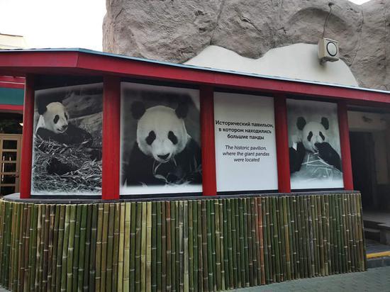 唐运动 习近平即将同普京共同出席莫斯科动物园熊猫馆开馆仪式