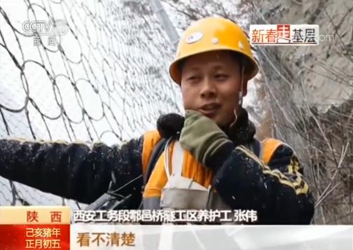 张伟:都是树叶啥的,看不清楚,没注意到,好尴尬。