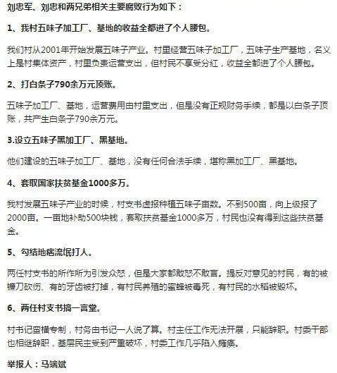 马端斌举报两任村支书的六项具体内容