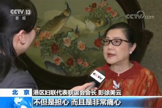 凯娜娜 港区妇联代表呼吁香港迷途青年:停一停,想一想