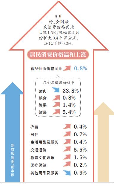 物价走势如何?就业形势怎么样?国家统计局解读5月经济数据