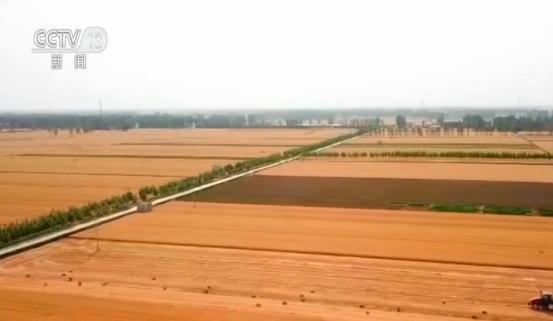 祭坛攻略 农业农村部:上半年农业农村经济运行稳中向好