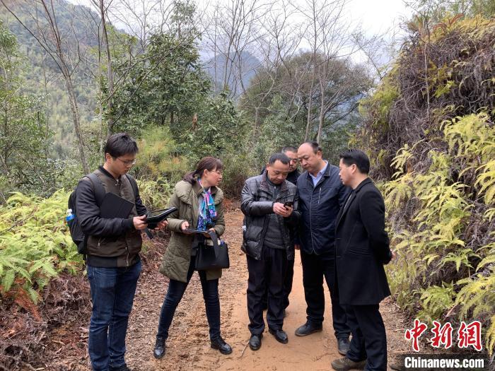 农夫山泉被质疑破坏生态 当地部门:确涉嫌毁林