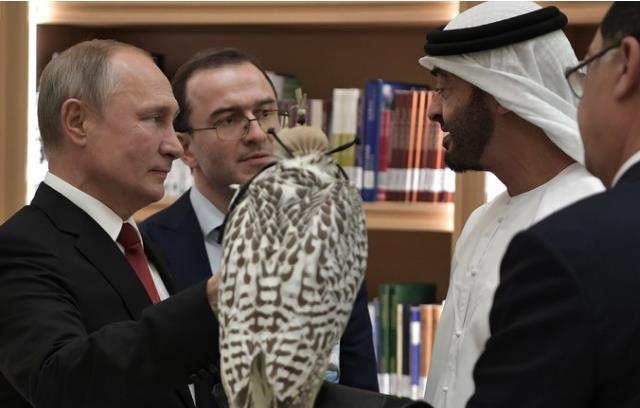 普京給阿聯酋王儲也送了隻獵鷹 獲贈這一精緻回禮