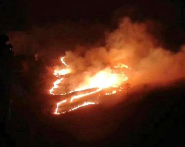 四川森林消防 供图